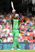 17th February 2019, Marvel Stadium, Melbourne, Australia; Australian Big Bash Cricket League Final, Melbourne Renegades versus Melbourne Stars; Dwayne Bravo of the Melbourne Stars skies the ball straight towards a fielder