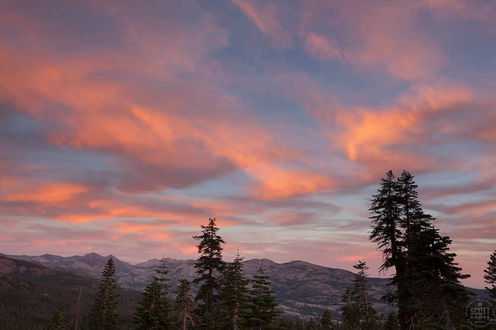 """Blackwood Canyon Sunset 3"" - Photograph taken in Tahoe's Blackwood Canyon of pine trees and mountain at sunset."