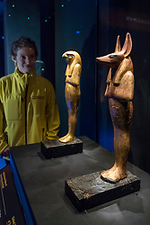 "© Licensed to London News Pictures. 01/11/2019. LONDON, UK. A staff member views (L to R) ""Gilded Wooden Statue of Herwer (Horus the Elder)"" and ""Gilded Wooden Jackal-Headed Figure of Duahmutef on Base"".  Preview of ""Tutankhamun, Treasures of the Golden Pharoah"" at the Saatchi Gallery in Chelsea.  The exhibition celebrates the 100th year anniversary of the opening of Tutankhamun's tomb and displays 150 works in the largest collection of Tutankhamun's treasures ever to leave Egypt.  The show runs 2 November to 3 May 2020.  Photo credit: Stephen Chung/LNP"