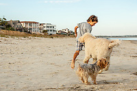 A young boy runs on the beach with his dogs.