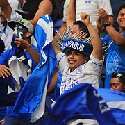 El Salvador fans celebrate a goal during the El Salvador Vs Trinidad and Tobago CONCACAF Gold Cup group B football match at Red Bull Arena, Harrison, New Jersey. USA. 8th July 2013. Photo Tim Clayton