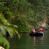 Expedition leader and naturalist Rab Cummings drives an inflatable boat filled with guests to shore at Sucia Island Marine State Park in the San Juan Islands of Washington State.