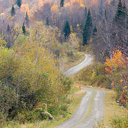 A dirt logging road in Pittsburg, New Hampshire.  Fall.