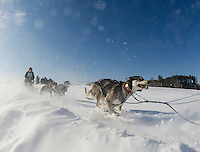 Through drifting snow Jim Blair leads his dog team out on the trail for the final Open Class race of the 86th annual Laconia World Championship Sled Dog Races Sunday afternoon.  (Karen Bobotas/for the Laconia Daily Sun)