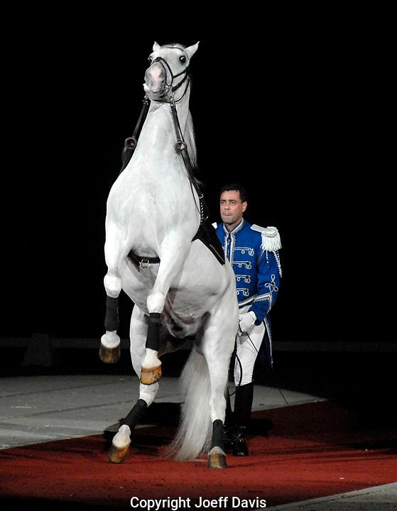 The Lipizzaner Stallions performance at the Gwinnett Civic Center in Duluth, Georgia
