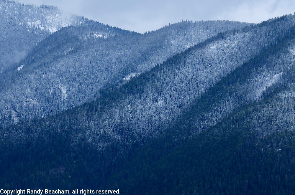 First snowfall of the year covers Elk Ridge in the Great Bear Wilderness. From my 2013 Artist-in-Wilderness Connection program residency run by the Flathead National Forest, Hockaday Museum of Art, Bob Marshall Wilderness Foundation and the Swan Ecosystem Center. Flathead Naitonal Forest, northwest Montana.
