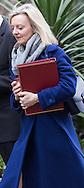 Environment Food and Rural Affairs Secretary Elizabeth Truss arrives at the UK Cabinet meeting at Downing Street, London.<br /> Picture by Paul Davey/Focus Images Ltd +447966 016296<br /> 08/03/2016