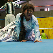 Cholita Carmen Rosa feels the pain during the 'Titans of the Ring' wrestling group performance at El Alto's Multifunctional Centre. Bolivia. The wrestling group includes the fighting Cholitas, a group of Indigenous Female Lucha Libra wrestlers who fight the men as well as each other for just a few dollars appearance money. El Alto, Bolivia, 24th January 2010. Photo Tim Clayton