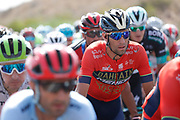 Vincenzo Nibali (ITA - Bahrain - Merida) during the UCI World Tour, Tour of Spain (Vuelta) 2018, Stage 6, Huercal Overa - San Javier Mar Menor 155,7 km in Spain, on August 30th, 2018 - Photo Luis Angel Gomez / BettiniPhoto / ProSportsImages / DPPI