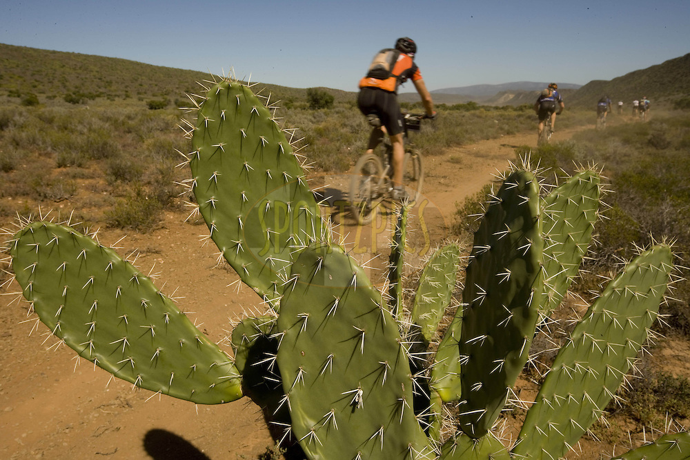 WESTERN CAPE, SOUTH AFRICA -  30 March 2008, Cactus dodging through the Karoo during stage two of the 2008 Absa Cape Epic Mountain Bike stage race from Saasveld Campus Nelson Mandela Metropolitan University in George to Calitzdorp Spa, Calitzdorp in the Western Cape, South Africa...Photo by Karin Schermbrucker/SPORTZPICS