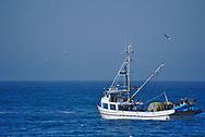 Fishing boat off Monterey coast.