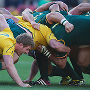 David Pocock, Australia, (left) and Schalk Burger, South Africa, (right) in the scrum during the South Africa V Australia Quarter Final match at the IRB Rugby World Cup tournament. Wellington Regional Stadium, Wellington, New Zealand, 9th October 2011. Photo Tim Clayton...