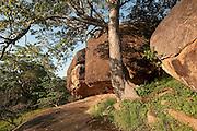Vessagiri Cave Complex. Anuradhapura.