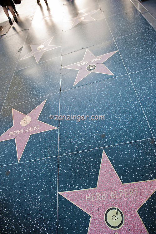 Hollywood, Boulevard, Herb Alpert, Walk of Fame, Los Angeles, Ca, Los Angeles, Ca,  entertainment, tourist, attractions ,Vertical image
