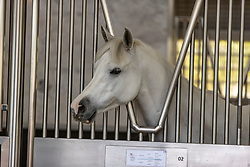 Emir's Stables - Emir Stallungen<br /> Doha - CHI Al SHAQAB 2020<br /> Al Shaqab Tour<br /> His Highness the Emir's Stables and Majlis. Marble and stainless steel bespoke stables housed in an elliptical A/c structure.<br /> 28. Februar 2020<br /> © www.sportfotos-lafrentz.de/Stefan Lafrentz