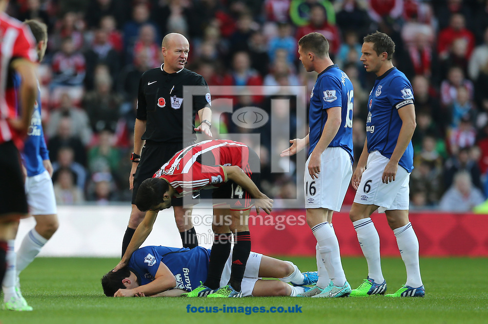 Jordi Gomez (14) of Sunderland apologizes to Gareth Barry of Everton during the Barclays Premier League match at the Stadium Of Light, Sunderland<br /> Picture by Simon Moore/Focus Images Ltd 07807 671782<br /> 09/11/2014
