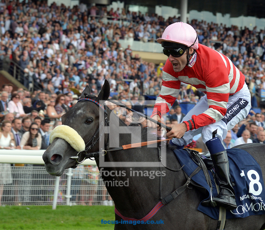 A preview of this weekend's favourites in UK racing.<br /> Picture by Martin Lynch/Focus Images Ltd 07501333150<br /> 13/10/2016<br /> <br /> <br /> Original Caption:<br /> Mecca's Angel with P Mulrennan 1st in Nunthorpe Stakes at York 21-8-15.