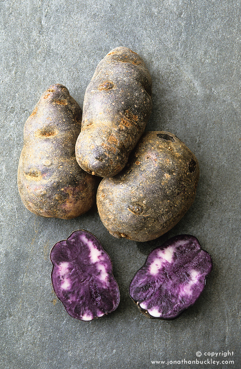 Purple salad potato - 'Salad Blue'