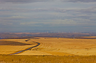 Views along the Highway 206, from Condon to Dufur in Central Oregon