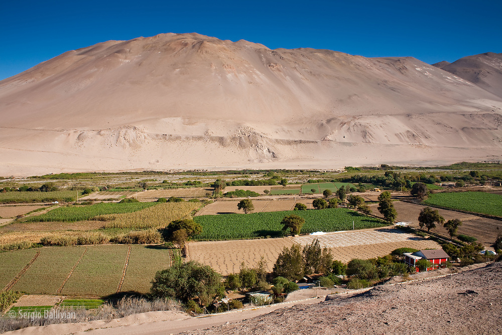 Farms grow fruits and vegetables with precise irrigation from the water of the Andes located east of and high above Chile's Atacama Desert.