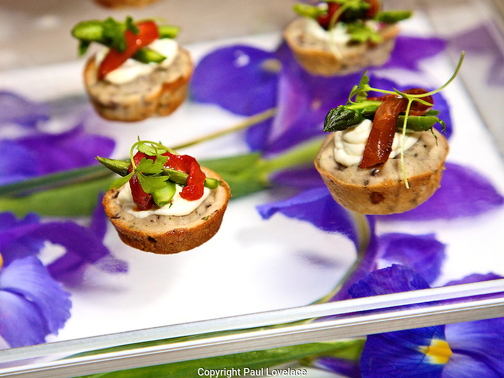 Gourmet Appetizers being serves at a launch party.