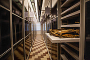 New Storage for Suitcases and changed storage System for historical Objects. A comprehensive modernisation of storages<br /> where suitcases of people who were deported to<br /> Auschwitz.. A safe fire extinguishing<br /> system, specialist lighting, and professional<br /> cabinets for storing objects were installed.<br /> The project is connected with extensive investments<br /> aimed at ensuring maximum safety of archival<br /> materials and the collections