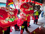 16 FEBRUARY 2018 - BANGKOK, THAILAND:  Lion dancers perform at Canton Shrine during Chinese New Year celebrations in the Chinatown neighborhood of Bangkok. Thailand has a large Chinese community and Lunar New Year is widely celebrated, especially in larger cities. This will be the Year of the Dog.      PHOTO BY JACK KURTZ