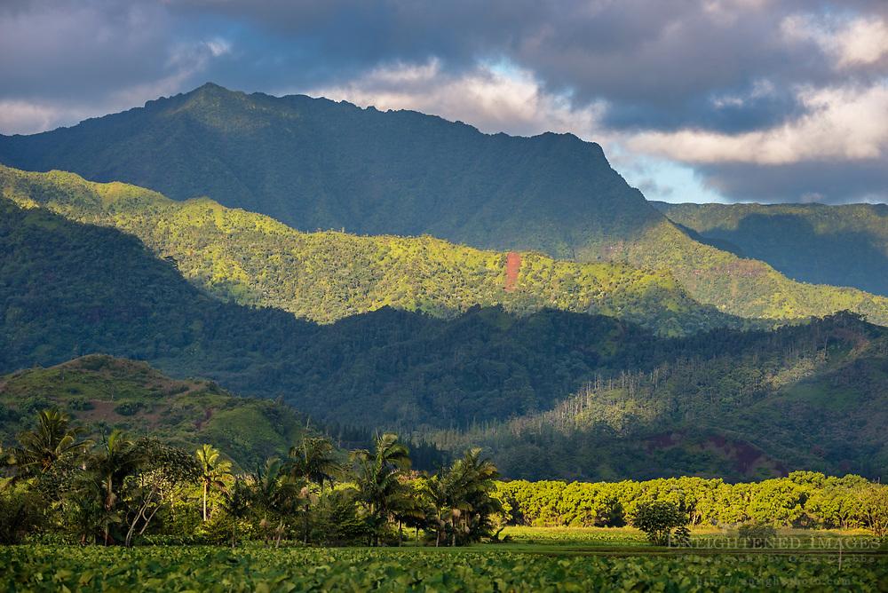 Sunlight on the Hanalei Valley, Kauai, Hawaii