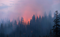 August 8, 2017 - Roseburg, Oregon, U.S - A small lightning started wildfire burns on a forested hillside near Diamond Lake. Hot and dry conditions in Oregon and much of the western United States are making for a very active wildfire season. (Credit Image: © Robin Loznak via ZUMA Wire)