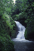 Wigmore's waterfall, Rarotonga, Cook Islands<br />