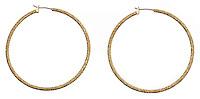 shimmery gold hoop earrings