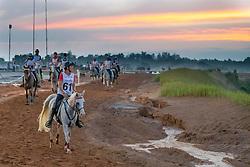 Lissarrague Barbara, SUI, Ainhoa Arkiris<br /> World Equestrian Games - Tryon 2018<br /> © Hippo Foto - Dirk Caremans<br /> 12/09/2018