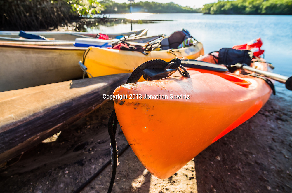 Closeup view of kayaks and canoes beached on a sunny river bank. <br /> <br /> WATERMARKS WILL NOT APPEAR ON PRINTS OR LICENSED IMAGES.<br /> <br /> Licensing: https://tandemstock.com/assets/29612396