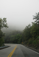 A road curve with mist covered trees. Virginia, United States