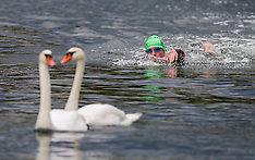 20130831 Christiansborg Rundt - Open Water Swimming