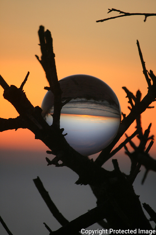 Sunrise through crystal ball in tree