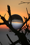 Sunrise through crystal ball in tree