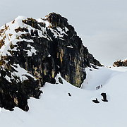 "The ""crew"" up on a ridge choosing lines to ski in Glacier National Park."