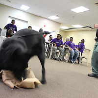 RAY VAN DUSEN/BUY AT PHOTOS.MONROECOUNTYJOURNAL.COM<br /> Monroe County Sheriff's Office K9 Officer Andy Lockhart holds his partner, Gunner, after he sniffed out some marijuana hidden in a bag. The demonstration was part of the MCSO's youth mentoring program.