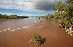 The brown waters of the Fitzroy River at Fitzroy Crossing after rain.  In full flood the river flows at 30,000 cubic meters per second.  The river is known as 'Bandrarl Ngadu' to local Aboriginal people.