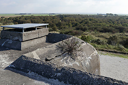 Bunker Wassermann, Schiermonnikoog