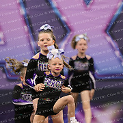 1088_Fierce Elite  - Violet