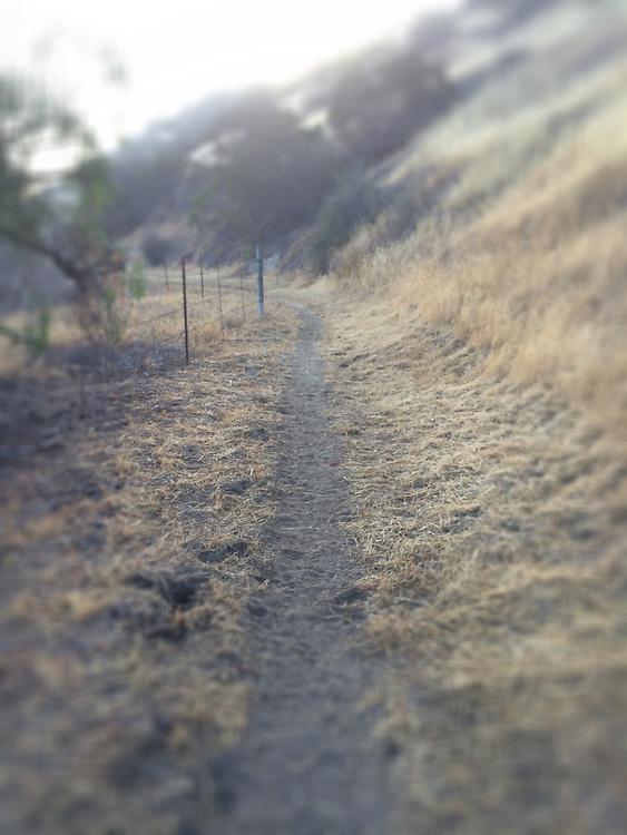 Hiking Trail in Alpine, CA