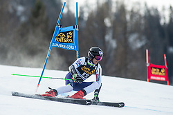 Forerunner competes during the Ladies' GiantSlalom at 56th Golden Fox event at Audi FIS Ski World Cup 2019/20, on February 15, 2020 in Podkoren, Kranjska Gora, Slovenia. Photo by Matic Ritonja / Sportida
