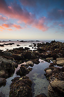 Asilomar SB Tide Pool at Sunset, Pacific Grove, California