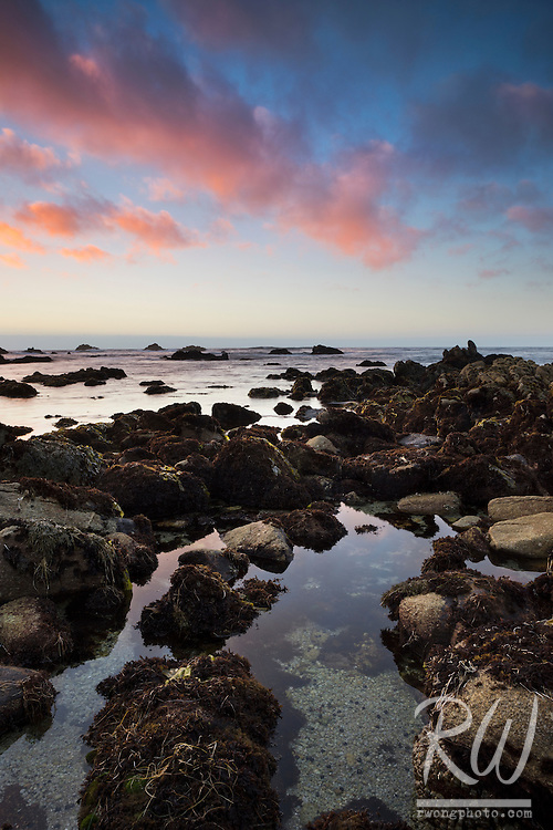 Asilomar SB Tide Pool at Sunset, Pacific Grove, California