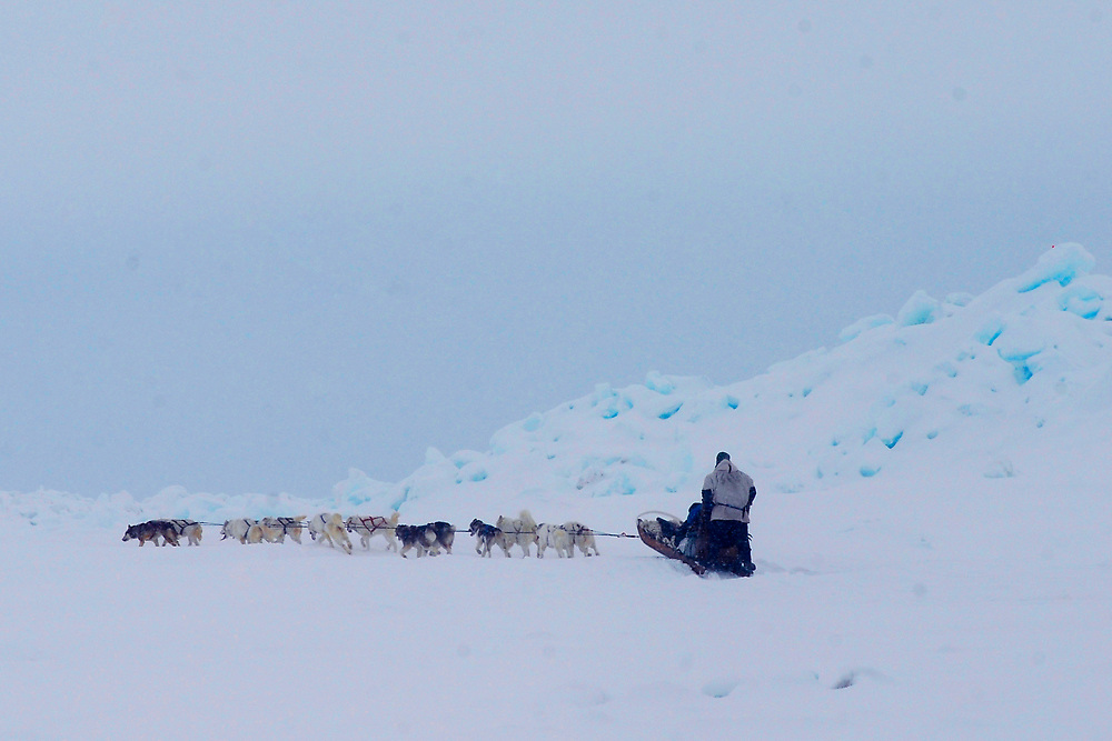 Barrow, Alaska. Dogsled on the ice of the Arctic Ocean during Spring. May 2007