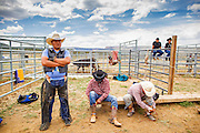 14 JULY 2012 - OAK SPRINGS, AZ:  Navajo cowboys wait to ride their bulls during a bull riding class at the Aspen Canyon Rodeo Club in Oak Springs Saturday. The bull riding class was offered by the Crooked Horn Cattle Co. in the community of Oak Springs on the Navajo Nation, about 15 miles south of Window Rock, AZ. Eleven cowboys signed up for bull riding classes and one signed up for bull fighting classes. The bull riding class started with lessons on a mechanical bucking machine before the cowboys rode bulls.    PHOTO BY JACK KURTZ