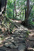 old  mountain walking trail Japan