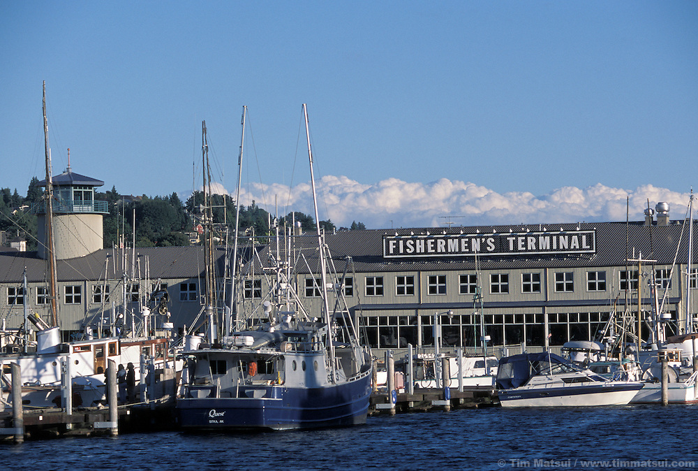 Fisherman's Terminal, Seattle.